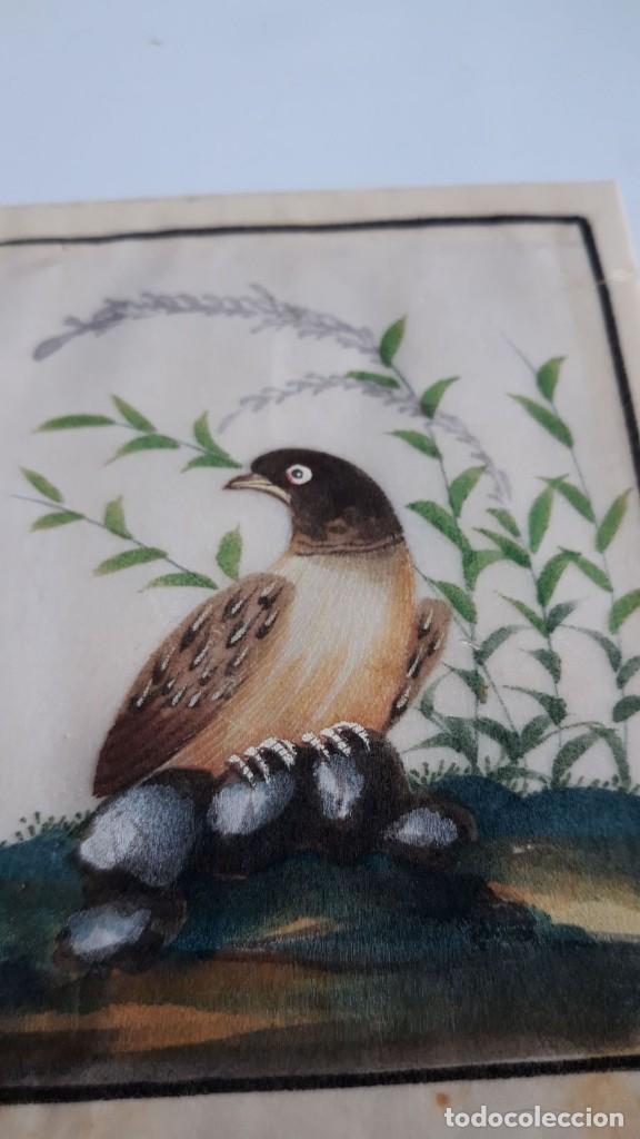 Arte: Dibujo figura aves pájaros tempera o acuarela sobre papel de seda o arroz China, Asia siglo XIX - Foto 3 - 117799115