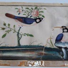 Arte: DIBUJO FIGURAS AVES O PÁJAROS TEMPERA O ACUARELA SOBRE PAPEL DE SEDA O ARROZ CHINA, ASIA SIGLO XIX. Lote 117799187