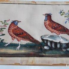 Arte: DIBUJO FIGURAS AVES O PÁJAROS TEMPERA O ACUARELA SOBRE PAPEL DE SEDA O ARROZ CHINA, ASIA SIGLO XIX. Lote 117799311