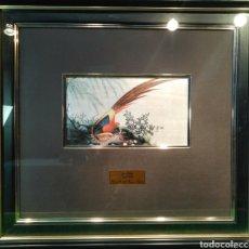 Arte: ARTE CHINO SIGLO XVIII PALACIO REAL DE ARANJUEZ. Lote 136596050