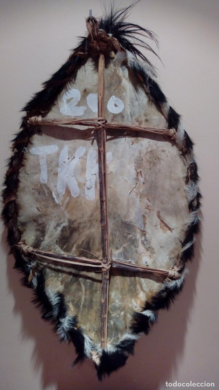 Arte: Escudo africano Masai pintado a mano. Piel bovina con pelo. Medidas 60 X 35 cm - Foto 11 - 168337580
