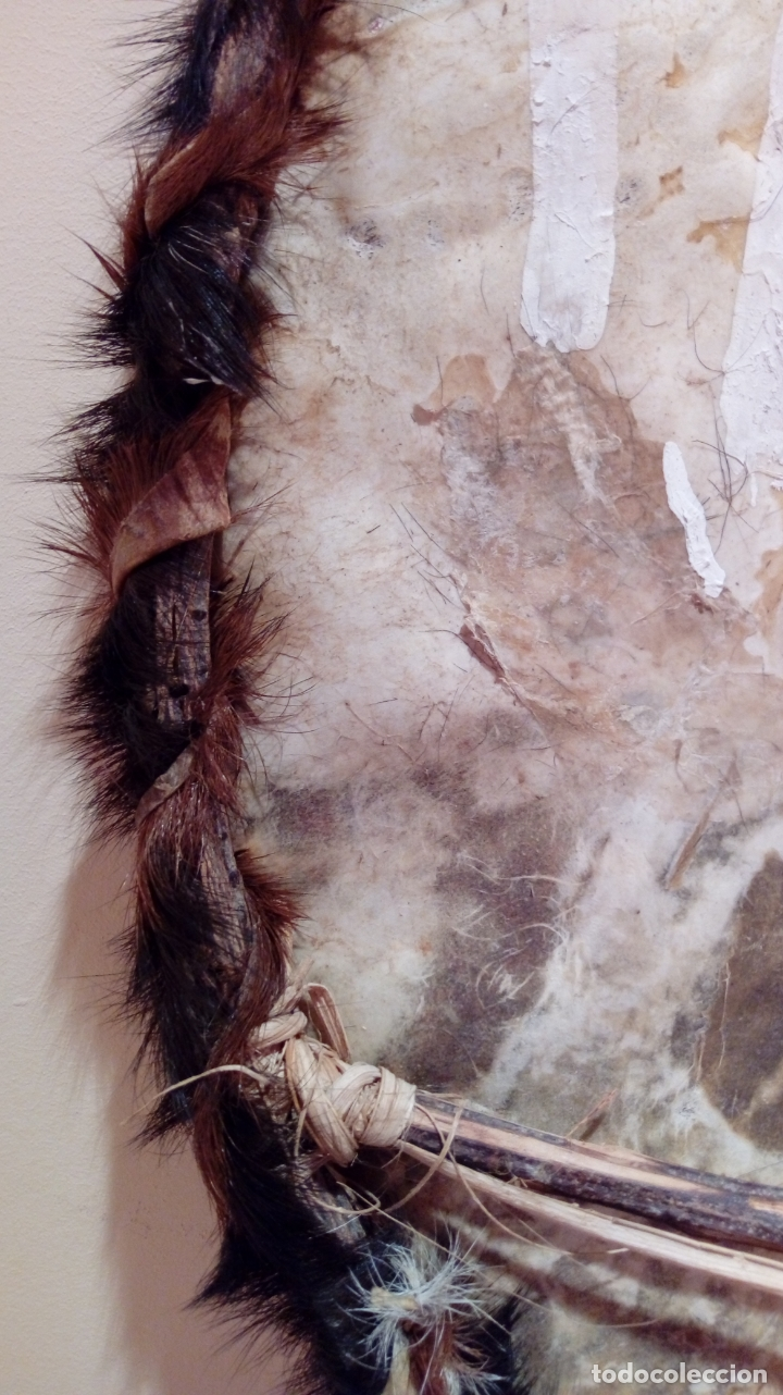 Arte: Escudo africano Masai pintado a mano. Piel bovina con pelo. Medidas 60 X 35 cm - Foto 16 - 168337580