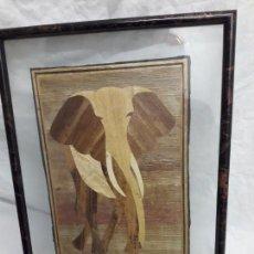 Arte: BELLO CUADRO MARQUETERÍA AFRICANA ELEFANTE ENMARCADO ENTRE DOS CRISTALES CON MOLDURA. Lote 171191242
