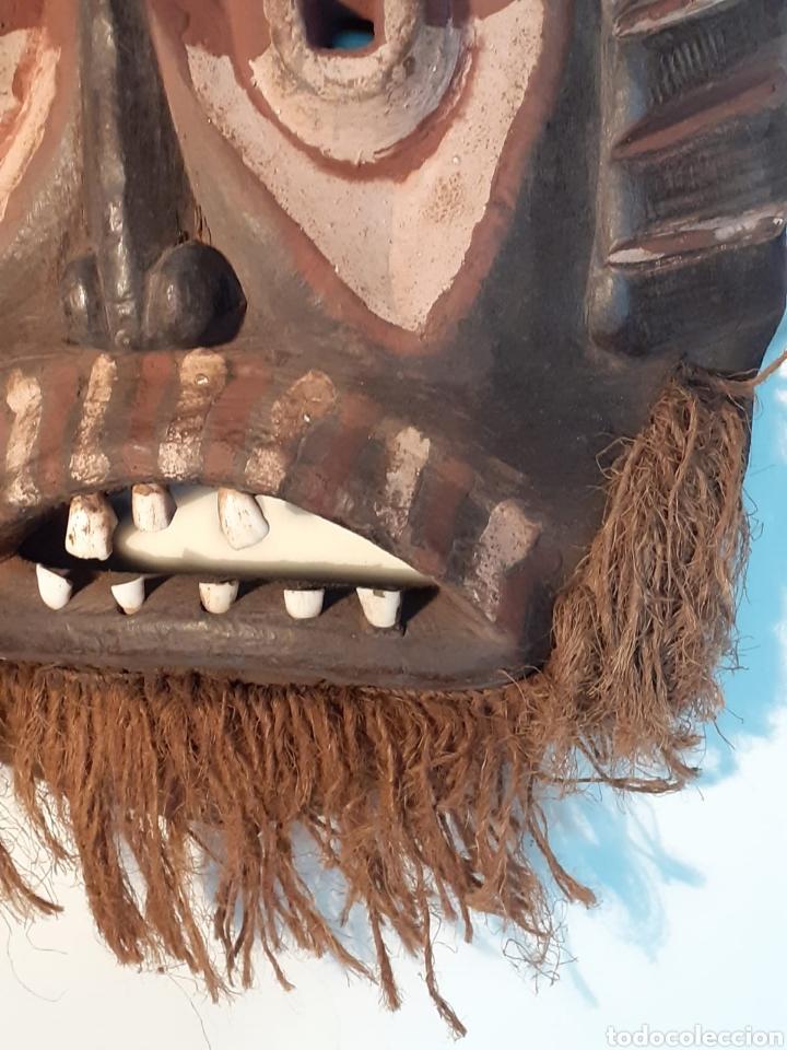 Arte: MÁSCARA TRIBAL - MADERA, DIENTES ANIMAL Y CÁÑAMO - TRIBU ÁFRICA - ETNOGRAFÍA - AÑOS 50 - Foto 9 - 195043776