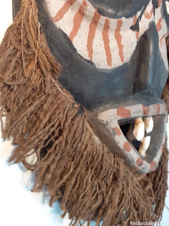 Arte: MÁSCARA TRIBAL - MADERA, DIENTES, CONCHAS Y CÁÑAMO - TRIBU ÁFRICA - ETNOGRAFÍA - AÑOS 50 - Foto 4 - 195044122
