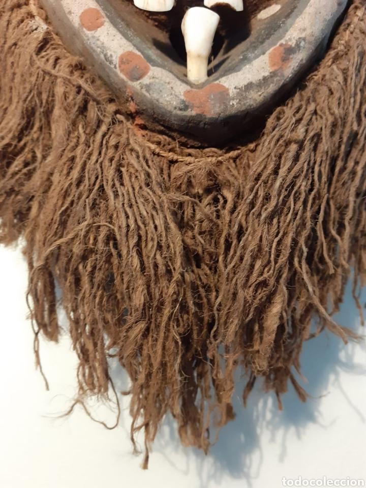 Arte: MÁSCARA TRIBAL - MADERA, DIENTES, CONCHAS Y CÁÑAMO - TRIBU ÁFRICA - ETNOGRAFÍA - AÑOS 50 - Foto 5 - 195044122