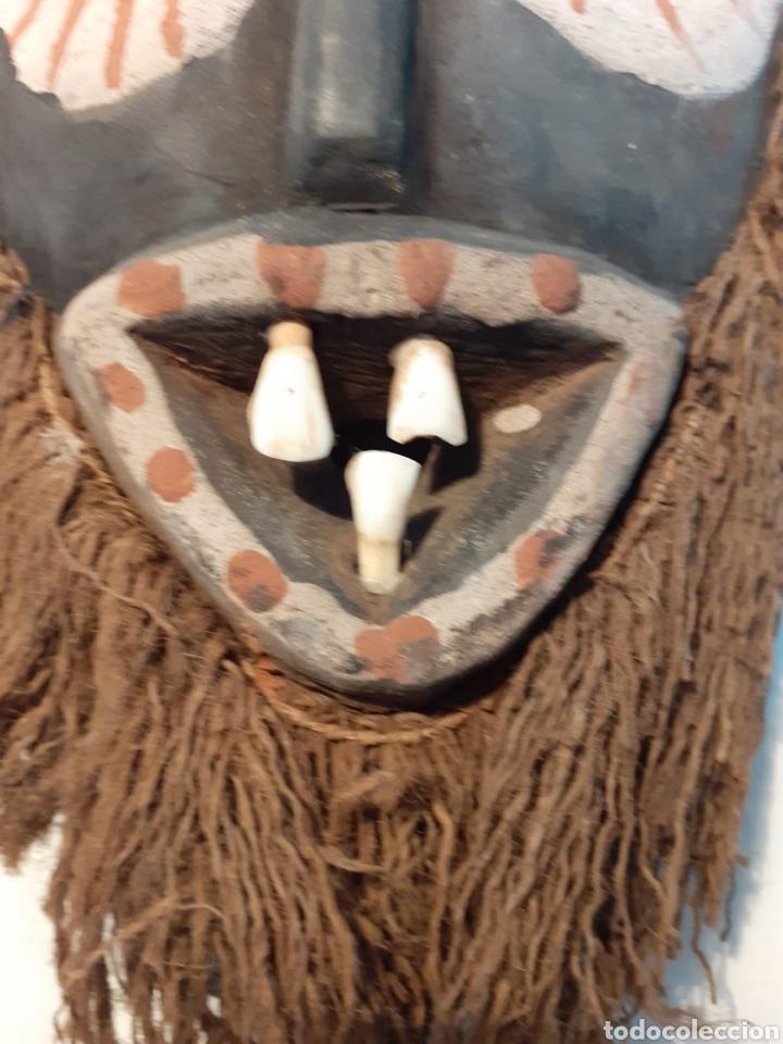 Arte: MÁSCARA TRIBAL - MADERA, DIENTES, CONCHAS Y CÁÑAMO - TRIBU ÁFRICA - ETNOGRAFÍA - AÑOS 50 - Foto 6 - 195044122