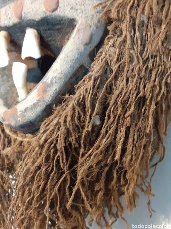 Arte: MÁSCARA TRIBAL - MADERA, DIENTES, CONCHAS Y CÁÑAMO - TRIBU ÁFRICA - ETNOGRAFÍA - AÑOS 50 - Foto 7 - 195044122