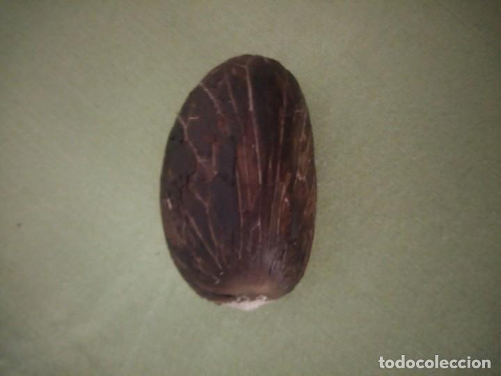 Arte: Imagen tallada en semilla tagua,marfil vegetal. - Foto 7 - 220602228