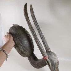 Arte: MASCARA RITUAL AFRICANA-ANTILOPE-----SENUFO--COSTA DE MARFIL. Lote 260712955