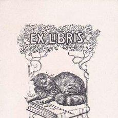 Arte: EX-LIBRIS DE J. CATVILLARÓ. 7X10. EX-LIBRIS. EX-LIBRIS. EXCELENTE EX - LIBRIS DE J. CATVILLARÓ/ TC/ . Lote 31632046