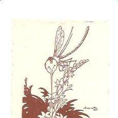 Arte: EX-LIBRIS CARLES SOLDEVILA – AUTOR JUNCEDA. Lote 145241166