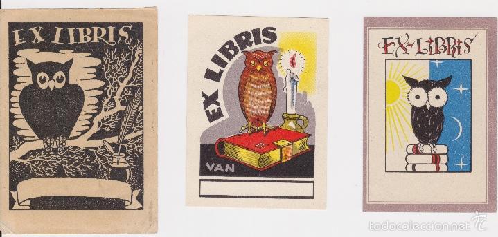 Arte: 12 EXLIBRIS (MEDICINA, FARMACIA, COMERCIO, PINTURA, CABALLOS, PAISAJES, LECTURA, ETC... - Foto 8 - 57305371