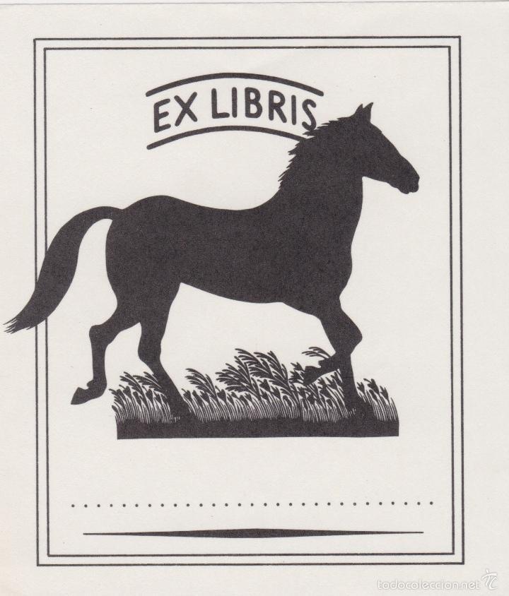 Arte: 12 EXLIBRIS (MEDICINA, FARMACIA, COMERCIO, PINTURA, CABALLOS, PAISAJES, LECTURA, ETC... - Foto 16 - 57305371
