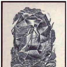Arte: GIROEXLIBRIS.- GRABADO DE HELMUT SEEHAUSEN: GRÁFICOS GRATUITOS, DE PLÁSTICO MEDIDAS 15X21. Lote 64916395