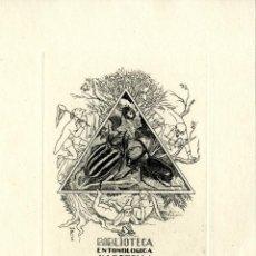 Arte: J. FERNÁNDEZ SÁEZ (1924-). BIBLIOTECA ENTOMOLÓGICA J. V. BOTELLA. Lote 88116844