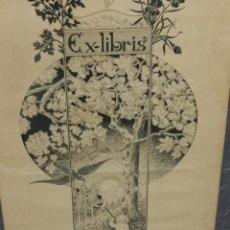 Arte: (M) IMPRESIONANTE EX-LIBRIS ORIGINAL A PLUMILLA FIRMADO YANÇ 1909, TAMAÑO 93X41 CM. Lote 193618141