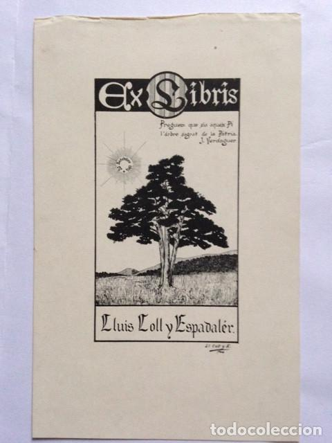 EX-LIBRIS EXLIBRIS LLUIS COLL Y ESPADALER. PINO SOL CAMPO (Arte - Ex Libris)