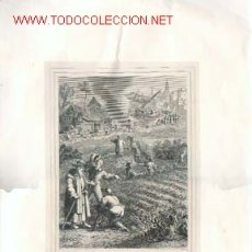 Arte: LA PARABOLA DE LA CIZAÑA. GRABADO DEL SIGLO XIX, MEDIDAS: 53 X 28,50 CMS.. Lote 24586286