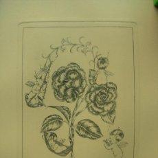 Arte: GRABADO ORIGINAL - E. ELIAS - MEDIDA LAMINA 50X36CM DIBUJO CENTRAL O MANCHA 25X19CM. Lote 29960976