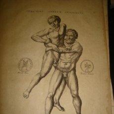 Arte: GRABADO DE HERCULES ANTAEUM INTERIMENS. AÑO 1727. 42 X 30CM. Nº 16. Lote 31571857