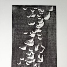 Arte: HARTUNG, H (1904-1989). XILOGRAFIA. RIVES. NUMERADA Y FIRMADA. 1973. H14. Lote 33769063