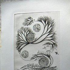 Arte: GRABADO FIRMADO W.REITTER. Lote 34901672