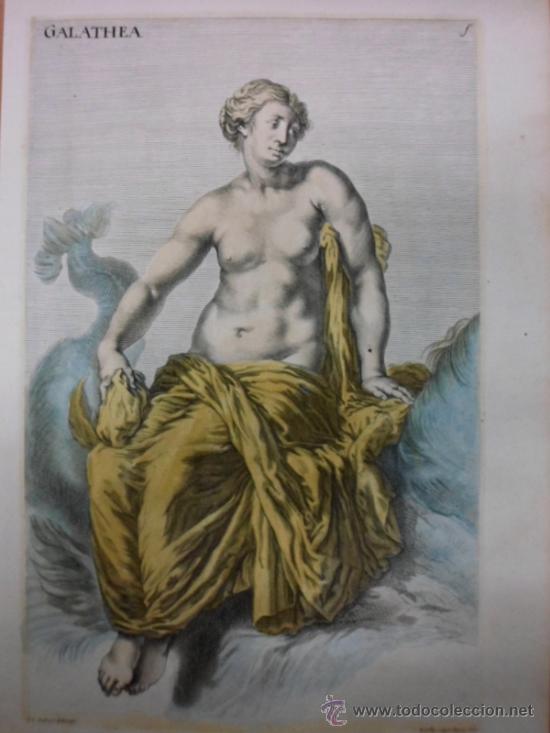 GALATHEA, SANDRAT, 1679 (Arte - Grabados - Antiguos hasta el siglo XVIII)