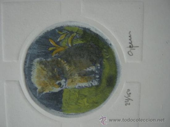 Arte: 3 bellos grabados Giorgio Ferrari firmados y numerados - gatos gatitos - miniaturas - Foto 5 - 35223969