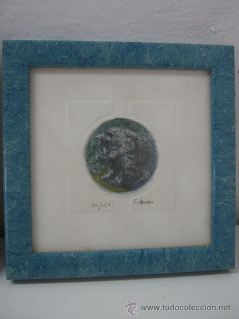 Arte: 3 bellos grabados Giorgio Ferrari firmados y numerados - gatos gatitos - miniaturas - Foto 3 - 35223969