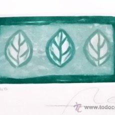 Arte: GRABADO DE HOJAS - MEDIDAS 6X11,5. Lote 36116348
