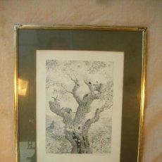 Arte: GRABADO ORIGINAL FIRMADO,TITULADO,NUMERADO Y FECHADO. Lote 36450800