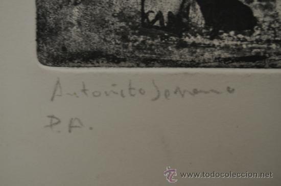 Arte: Antoñito Serrano. Aguafuerte, PA. - Foto 2 - 36835016