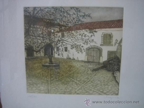 Arte: Grabado de Virginia. 165/175. Medidas cuadro 55X55 grabado 24X23 cm - Foto 2 - 37865823