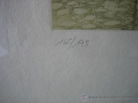 Arte: Grabado de Virginia. 165/175. Medidas cuadro 55X55 grabado 24X23 cm - Foto 4 - 37865823