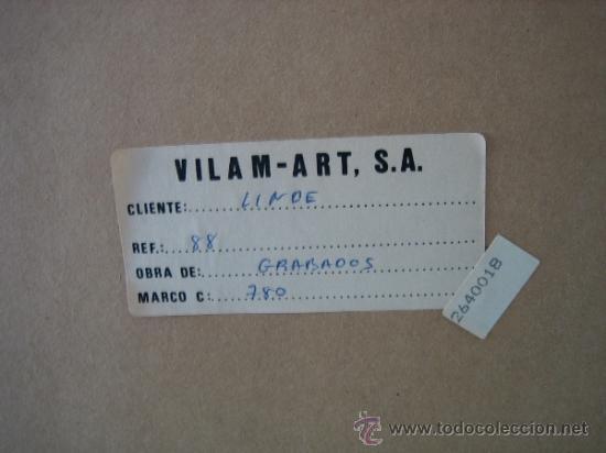 Arte: Grabado de Virginia. 165/175. Medidas cuadro 55X55 grabado 24X23 cm - Foto 7 - 37865823