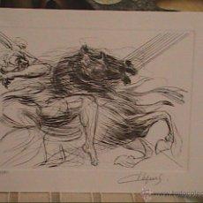 Arte: EXCELENTE GRABADO ORIGINAL DE JEAN DUPUIS. CHEVAL.NUMERADO Y FIRMADO A LÁPIZ.. Lote 39816948