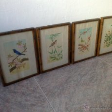 Arte: 4 REP. ANTIGUOS GRABADOS DE PAJAROS ORIENTALES CON MARCO DE BAMBÚ AUTENTICO,. Lote 100532551