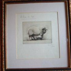 Arte: HENRY MOORE. AGUAFUERTE FIRMADO. ÚNICA PRUEBA DE ESTADO BAT. SHEEP WITH LAMB III. 1972. Lote 40490155