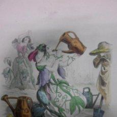 Arte: PERSONIFICACION DE LA FLOR ARVEJA, 1840, J.J.GRANDVILLE. Lote 41331463