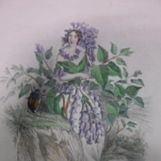 Arte: PERSONIFICACION DE LA FLOR LILA, 1840, J.J. GRANDVILLE. Lote 41331526