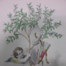 Arte: PERSONIFICACION DE LA FLOR DE MIRTO, 1840, J.J. GRANDVILLE. Lote 41331545