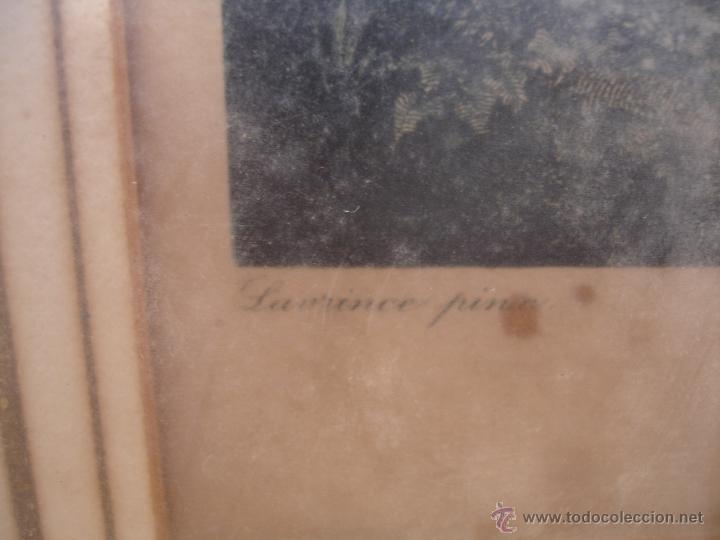 Arte: GRABADO A COLOR SIGLOXVII GRABADO C.VARIN - Foto 4 - 43917122