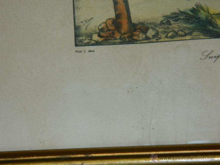 Arte: VICTOR J. ADAM 1851 Londres nº3 - Foto 2 - 45318736