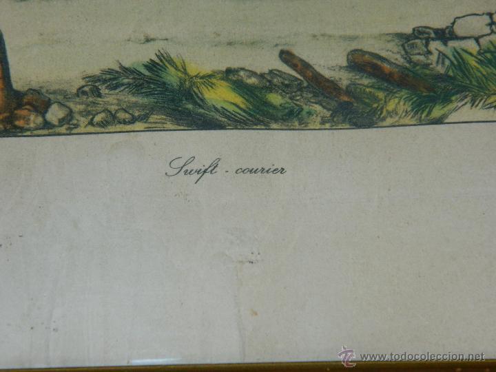Arte: VICTOR J. ADAM 1851 Londres nº3 - Foto 3 - 45318736