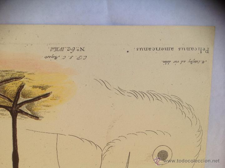 Arte: Grabado coloreado a la acuarela. - Foto 3 - 45362891