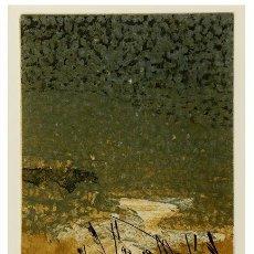 Arte: ASSUMPCIÓ MATEU NEGRE (CASSÀ DE LA SELVA, GIRONA, 1952). 1989. GRABADO P.A. Lote 47150142