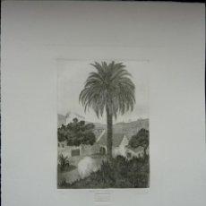 Arte: HACIENDA LA PORZUNA DE FRANCISCO CUADRADO. Lote 47806009