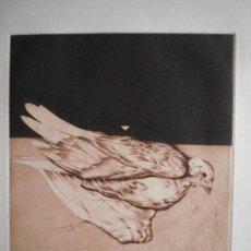 Arte: JOSÉ DÍAZ AZORÍN, PEPE AZORÍN (ALICANTE 1939) GRABADO COLOMA FERIDA 15/110 FIRMADO Y CAMISA ORIGINAL. Lote 48039410