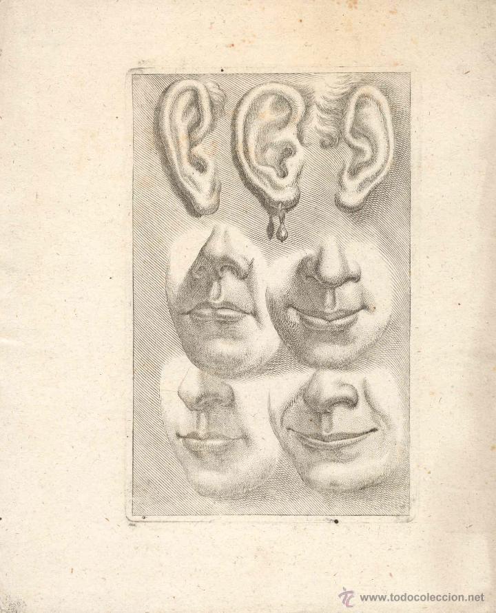 ESTAMPA DEL SIGLO XVII DETALLES DE OREJAS Y BOCA CUARTILLA DE APRENDIZAJE GRABADO (Arte - Grabados - Antiguos hasta el siglo XVIII)